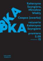 CBAPKA (swarka) (program)